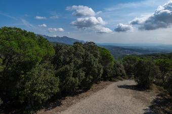 El turó de l'Avellana i Ca n'Aguilera. Valls de l'Anoia