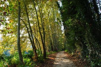 El Tordera i el Parc de les Rieres. Hostalric