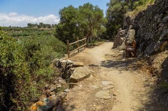 El camí dels Molins. Riudecanyes