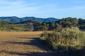 """Ruta """"Cap a can Bernades"""". Santa Margarida de Montbui."""