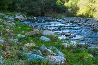 """""""Ruta dels veinats de Planoles"""". Planoles. Parc Natural de les Caçaleres del Ter i del Freser."""