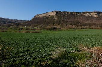 Un tomb pels paisatges rurals de Sant Hipòlit de Voltregà