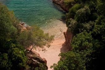 Camí de Ronda de Sant Feliu a Sagaró