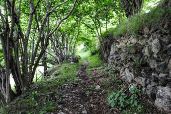 De Capdella a la Cabana de Filià. Vall Fosca
