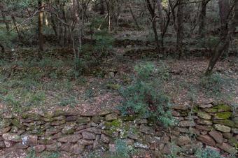 Al castell de Montbui voltejant el puig del Prat. Sant Feliu de Codines