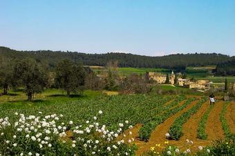 Quatre pobles als peus de les Gavarres. Madremanya.