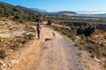 """Ruta """"Vilamitjana-Serra dels Nerets"""". Tremp."""