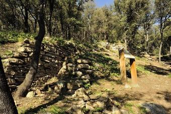 Ruta al poblat ibèric de Puig Castell a Cànoves i Samalús.