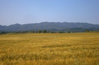 Etapa 6. La Bisbal - Madremanya. Gran Volta a les Gavarres