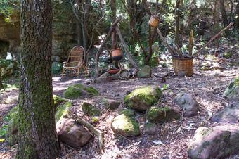 """Ruta """"Bosc de les Bruixes"""". L'Argentera."""