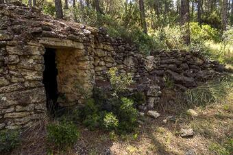 Barraques de pedra seca de can Tardà. Castellolí