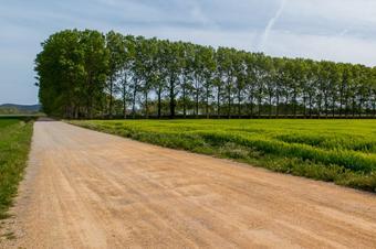 """Ruta """"Platja de Pals..."""". Parc Natural del Montgrí, les Medes i el Baix Ter."""