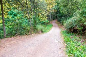 """""""Ruta de la riera de Vallfornès"""": Cànoves i Samalús."""