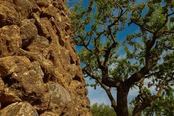Sant Quintí de Mediona, natura local, excursions a peu, sortida familiar en btt, cultura excursionista