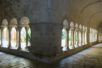 Ruta dels ecosistemes. Girona