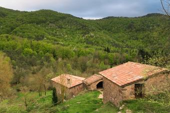 Itinerari del torrent de Santa Llúcia de Puigmal. St. Joan de les Abadesses.