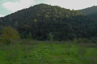 La ruta dels arbres. Figaró-Montmany