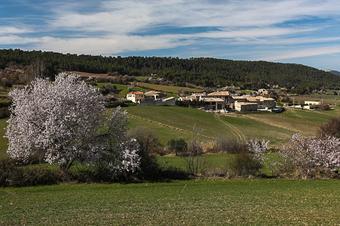 Puig Castellar i la plana d'Ancosa. Serres de l'Anoia