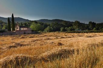 Ruta de Sant Miquel. Girona