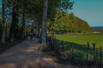 Ruta del Ter en bici (3/4). Tram 3/4. Manlleu-Girona