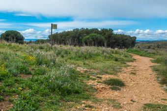 """""""Ruta de Vilanera"""". Parc Natural del Montgrí, Illes Medes i el Baix Ter."""