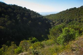 La vall de Ca n'Aguilera. Piera.