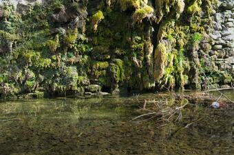 Passeig de l'aigua. Sant Joan de les Abadesses.