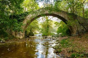 Pel riu Ges descobrint Sant Pere de Torelló.