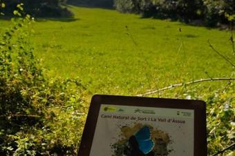Itinerari pel Batlliu de Sort