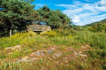 """""""Ruta fonts i fortins de Ribes de Freser"""". Parc Natural de les Capçaleres del Ter i del Freser."""