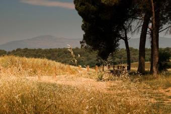 Itinerari del Camí de Sant Valerià